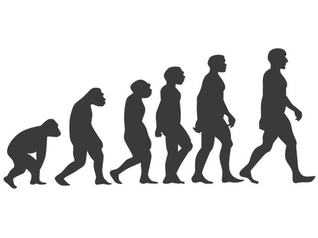 猿から人類への進化